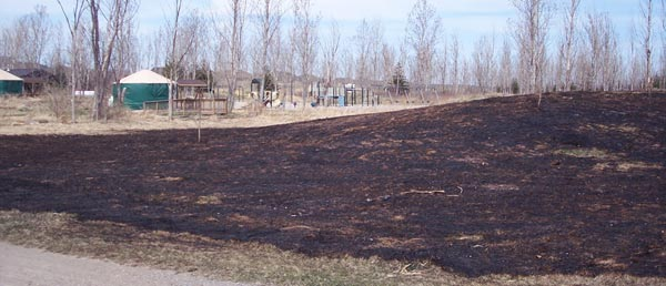 campground fire Bronte Creek 2009